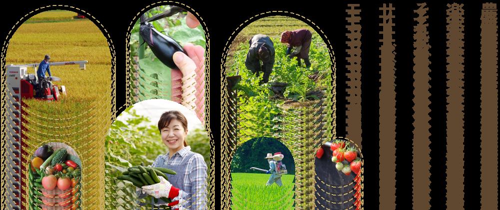 農業をつなぐ、それが私たちの使命。アルク農業サービス